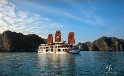 Orchid Cruise - Unique luxury Halong cruise