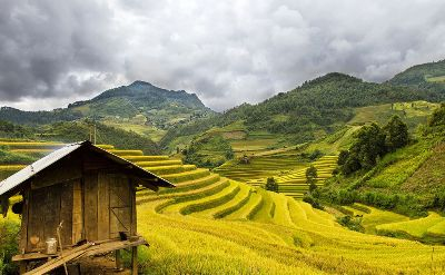 Sapa - Local homestay experience